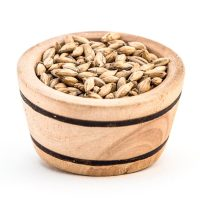 Acidulated Malt 500g